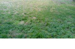 Terrain à Pordic 22590 414m2 55750 € - SMO-19-10-15-4