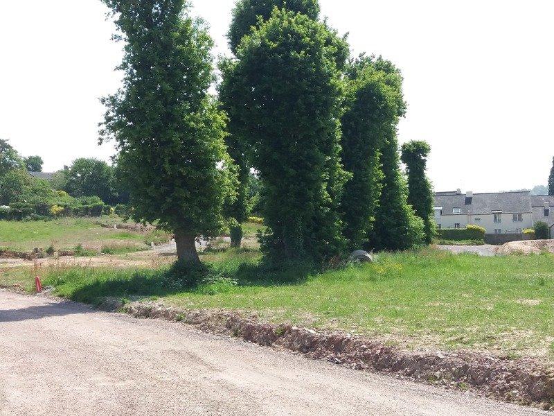 Terrain à Monterfil 35160 420m2 44000 € - RTU-18-11-19-25