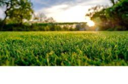 Terrain à Quédillac 35290 1036m2 46000 € - EREV-20-01-24-2